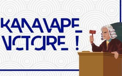 Le CBD enfin légal ? La décision de la Cour européenne sur l'affaire Kanavape est une claque pour la France